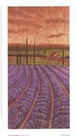 Soleil De Provence II  Fine Art Print