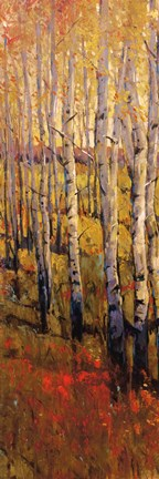 Framed Vivid Birch Forest I Print
