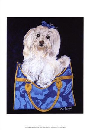 Framed Maltese Clutch Print
