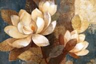 Turquoise Magnolias  Fine Art Print