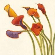 Callas in the Wind II  Fine Art Print
