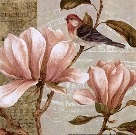 Magnolia Collage I Mini Fine Art Print By Pamela