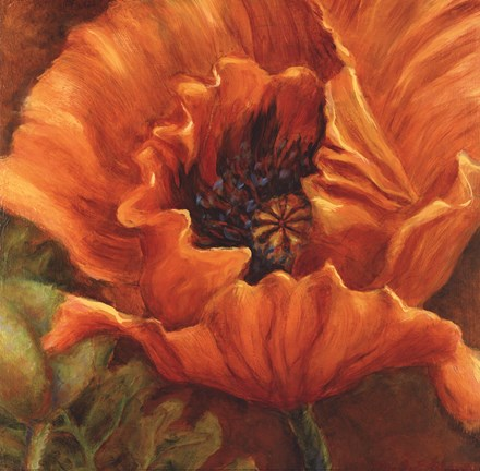 Framed Orange Poppy Print
