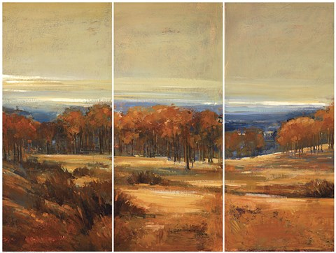 Framed Golden Horizon Triptych Print