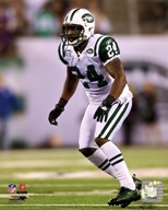 Darrelle Revis 2010 Action