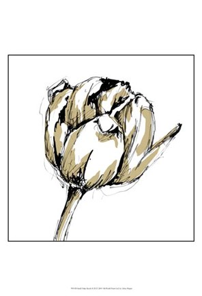 Framed Small Tulip Sketch II Print