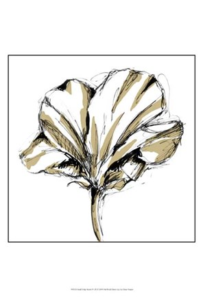 Framed Small Tulip Sketch IV Print