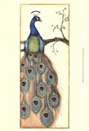 Small Rebecca's Peacock I (P)  Fine Art Print