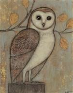 Ornate Owl I  Fine Art Print