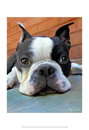 Framed Moxley Boston Terrier Print