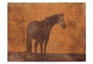 Oxidized Horse I  Fine Art Print
