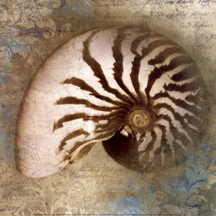 Framed Nautical Beauty Print