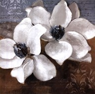 White Magnolia II