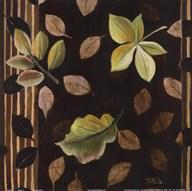 Hojitas I  Fine Art Print