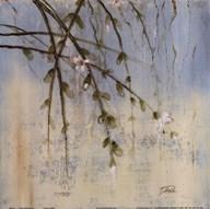 Cherry Blossom II Art