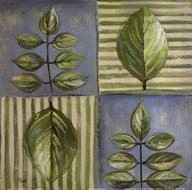 Natura II  Fine Art Print