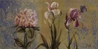 The Garden II  Fine Art Print