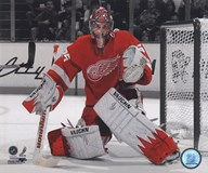 Jimmy Howard 2010-011 Spotlight Action Art
