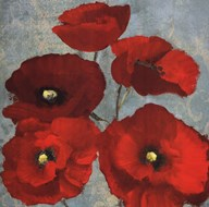 Kindle&#39;s Poppies II