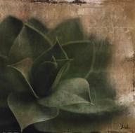 Succulent II Art