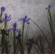 Blue Irises II Art