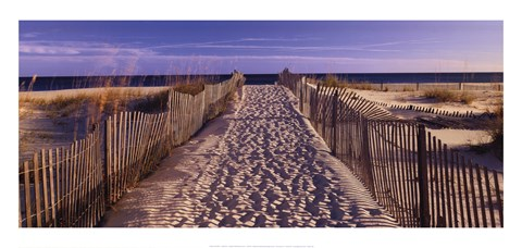 Framed Pathway to the Beach Print