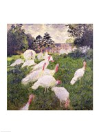 The Turkeys at the Chateau de Rottembourg, Montgeron, 1877 Art