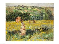 Limetz Meadow, 1887  Fine Art Print