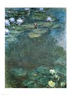 Water-Lilies Art