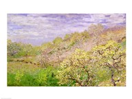 Trees in Blossom Art
