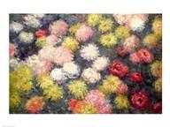 Chrysanthemums, 1897  Fine Art Print