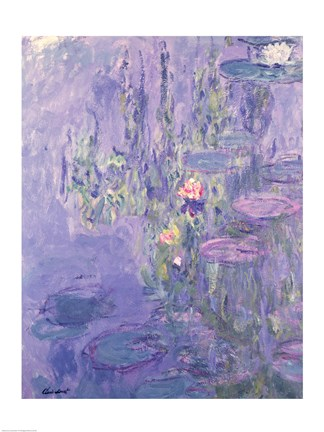 Framed Waterlilies, 1907 Print