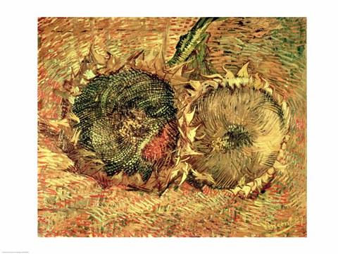 Framed Two Cut Sunflowers, 1887 Print