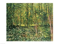 Trees and Undergrowth, 1887