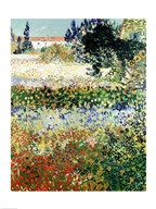 Garden in Bloom, Arles, 1888