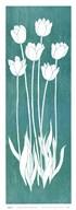 Allegra I  Fine Art Print