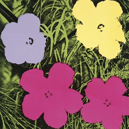 Framed Flowers, 1970 (1 purple, 1 yellow, 2 pink) Print