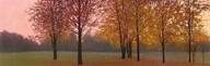 Autumn Dawn, Maples Art