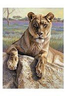 Serengeti Lioness