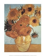 Sunflowers on Blue, 1888  Fine Art Print