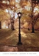 Autumn in the Park Art