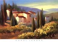 Blue Shadows in Tuscany II  Fine Art Print