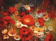 Meadow Poppies I  Fine Art Print