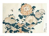Chrysanthemums Art