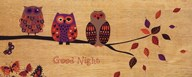 Good Night Owl  Fine Art Print