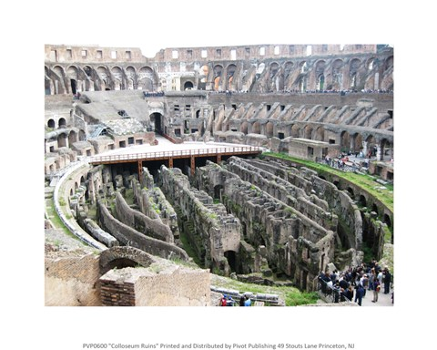 Framed Coloseum Ruins Print