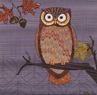 Awesome Owls II  Fine Art Print