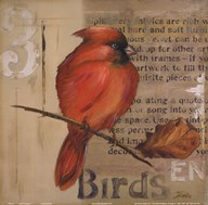 Red Love Birds II  Fine Art Print