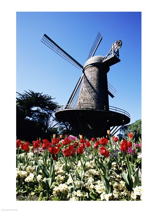 Framed Low angle view of a traditional windmill, Queen Wilhelmina Garden, Golden Gate Park, San Francisco, California, USA Print