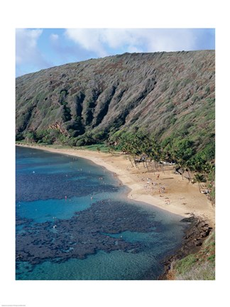 Framed High angle view of a bay, Hanauma Bay, Oahu, Hawaii, USA Vertical Print